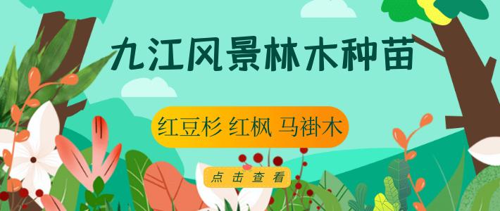 九江�L景林木�N苗有限公司